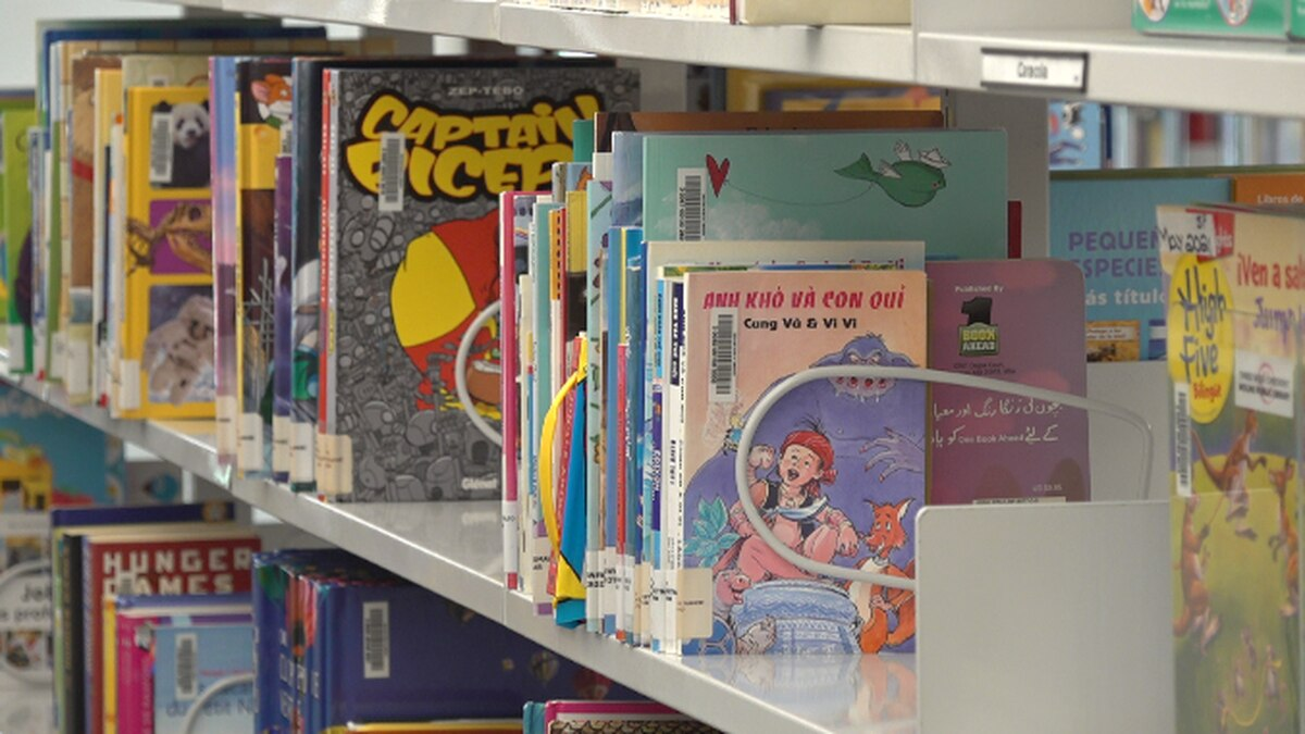 The Moline Public Library and Headstart: Project Now is hosting their first Bridging Literacy...