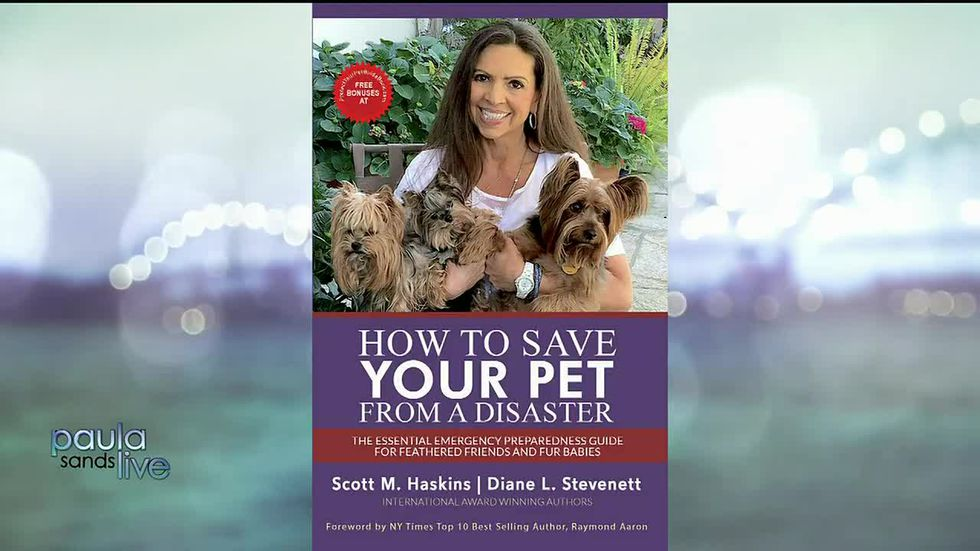 How To Protect Your Pet from A Disaster
