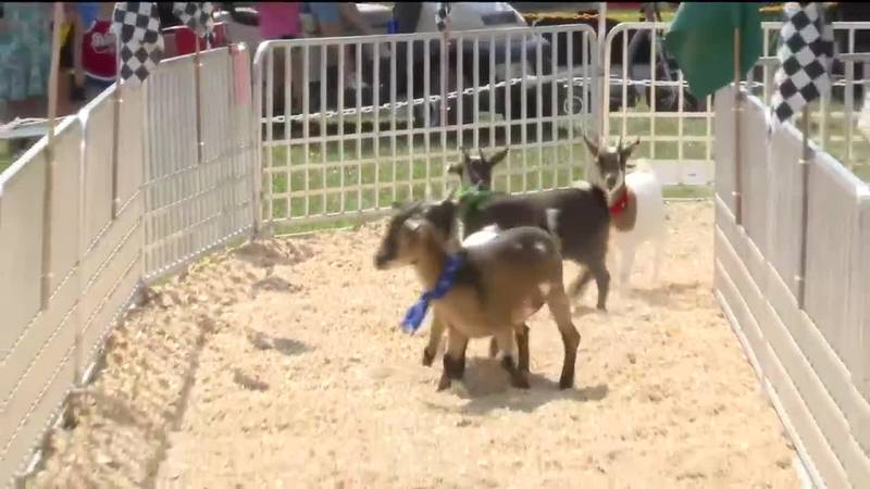 Mississippi Valley Fair returns, expects tens of thousands for grandstand acts