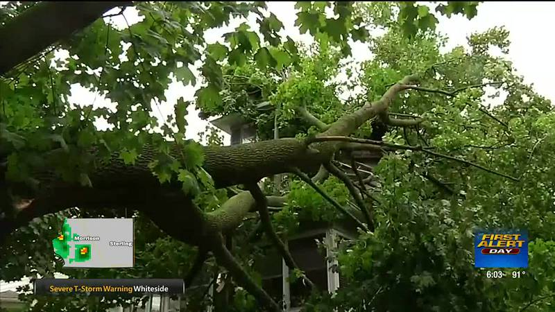 2020 Derecho: The impact one year later