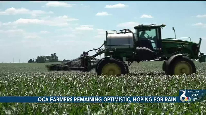QCA farmers hoping for rain as potential for drought increases