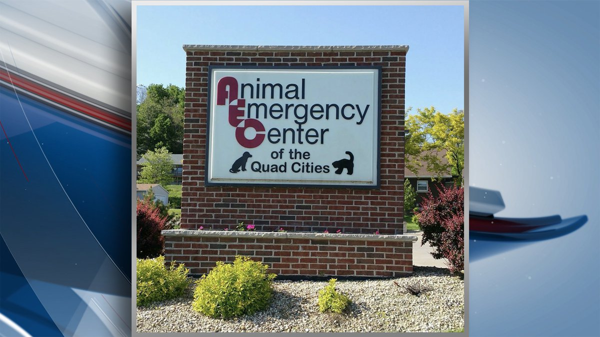 The Animal Emergency Center of the Quad Cities will be closed Wednesday and Thursday due to a...