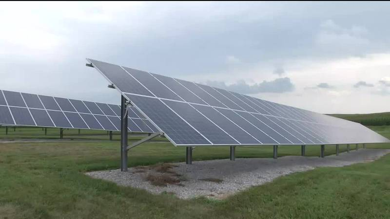 Sustainability on the farm includes having solar panels.