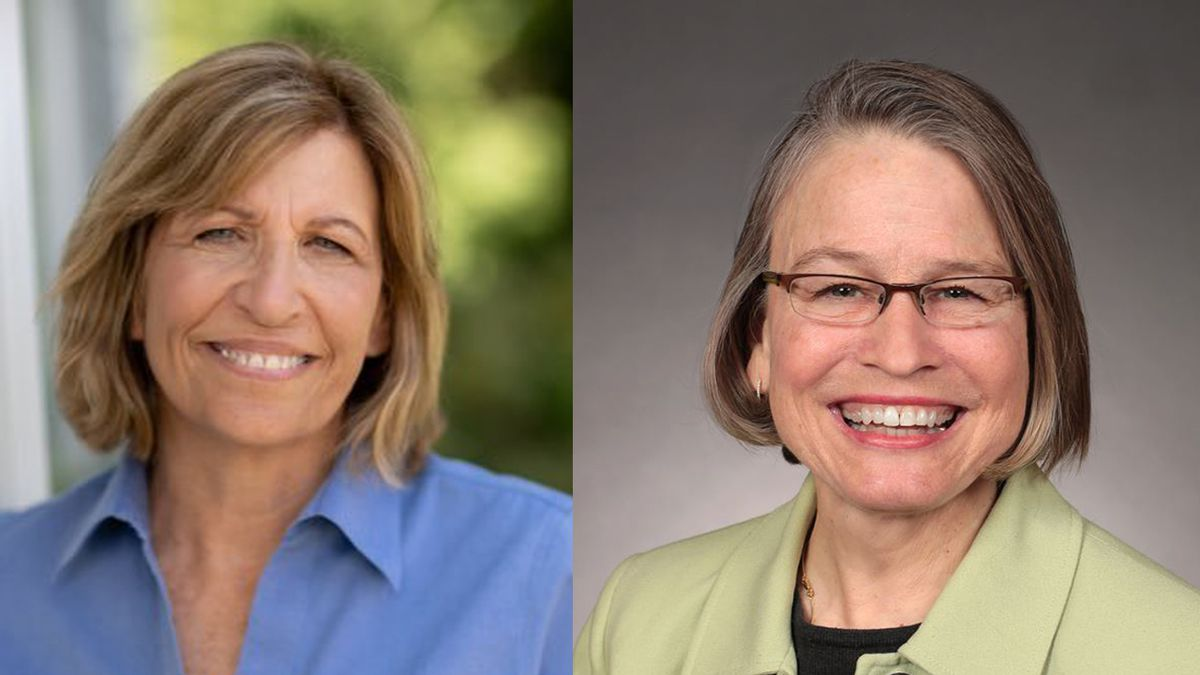 Rita Hart (D) and Mariannette Miller-Meeks (R) are candidates for Iowa's 2nd Congressional District in 2020.